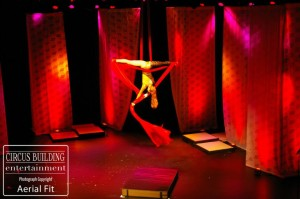 Aerial Silks Performer Charleston Music Hall