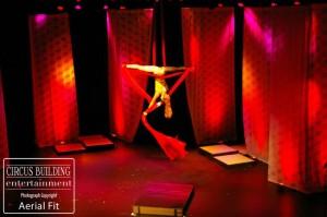 Aerial Silks Performer Charleston Music Hall