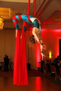 Cirque Entertainment at the Marriott Charleston SC