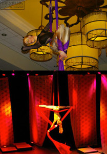 Aerial Silks Performers Charleston SC