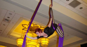 Aerial Silks Performer Charleston SC Marriott