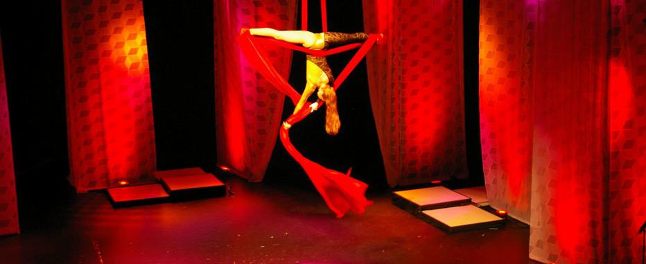 Aerial Silks Performer Charleston SC