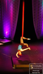 Aerial Sling Performer Charleston Music Hall