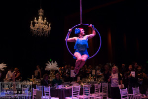 Aerial Hoop Performer Charleston SC